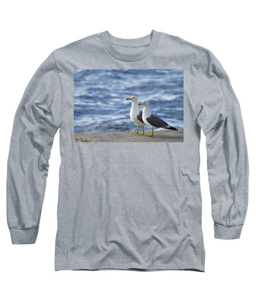Posing Seagulls Long Sleeve T-Shirt