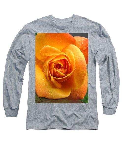 Long Sleeve T-Shirt featuring the photograph Pure Gold - Roses From The Garden by Brooks Garten Hauschild