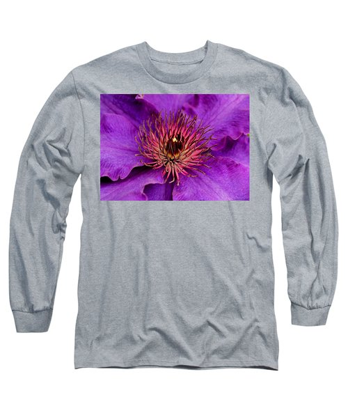 Long Sleeve T-Shirt featuring the photograph Purple Clematis by Suzanne Stout