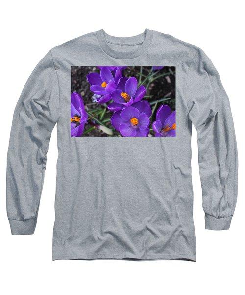 Purple Passion Long Sleeve T-Shirt by Judy Palkimas