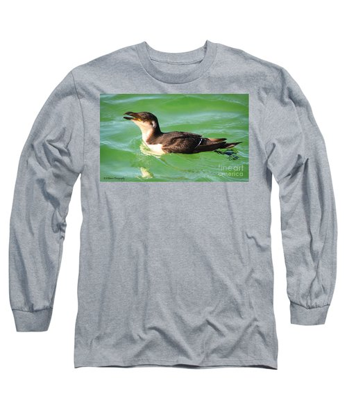 Razorbill In Florida Long Sleeve T-Shirt