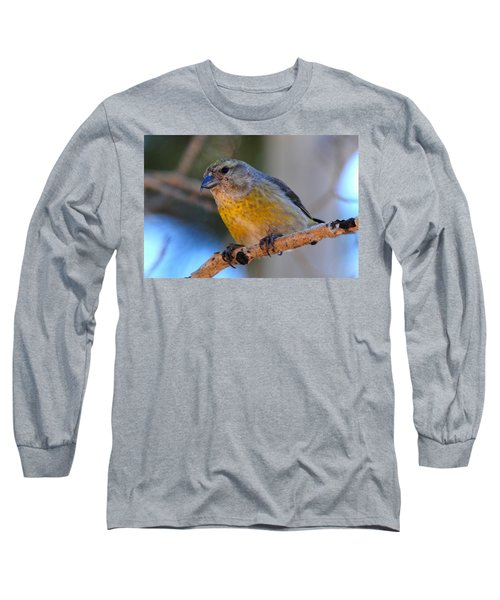 Red Crossbill Female Long Sleeve T-Shirt by Marilyn Burton