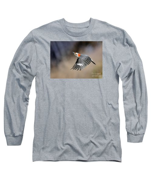Redbelly Woodpecker Flight Long Sleeve T-Shirt by Nava Thompson