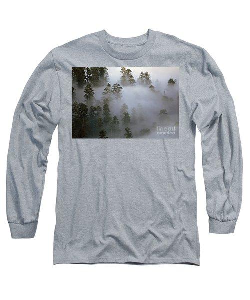 Redwood Creek Overlook With Giant Redwoods  Long Sleeve T-Shirt