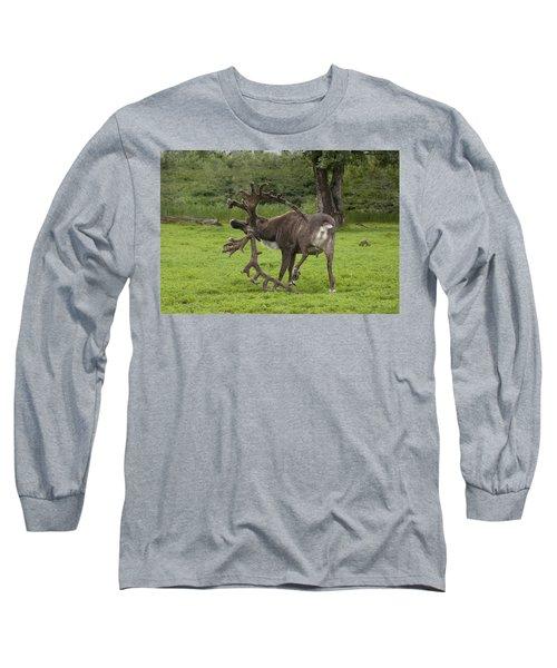 Reindeer With A Big Rack Long Sleeve T-Shirt
