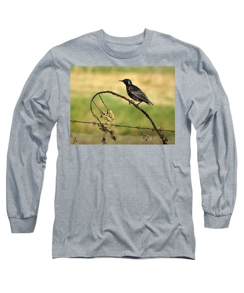 Rest Stop 6 - Oregon Long Sleeve T-Shirt