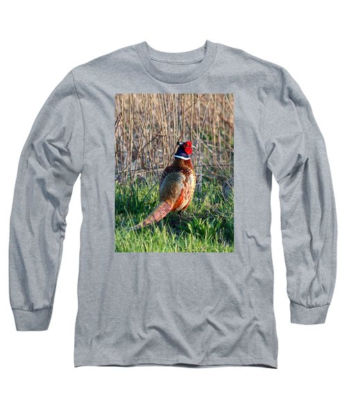 Ring-necked Pheasant Long Sleeve T-Shirt by George Jones