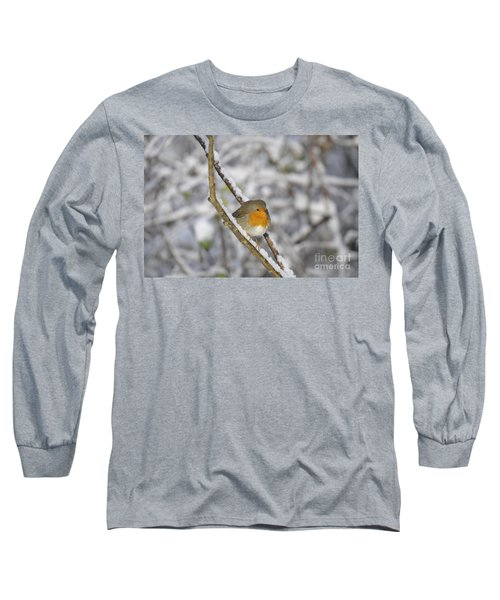 Robin At Winter Long Sleeve T-Shirt