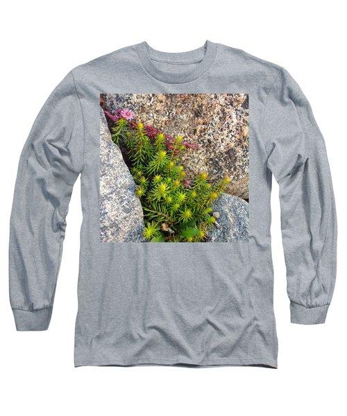 Long Sleeve T-Shirt featuring the photograph Rock Flower by Meghan at FireBonnet Art