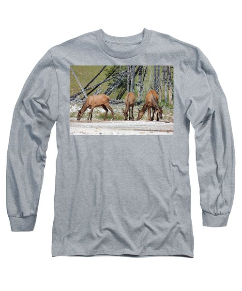 Rocky Mountain Elk Long Sleeve T-Shirt
