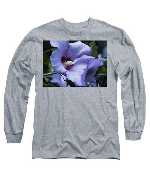 Rose Of Sharon Long Sleeve T-Shirt