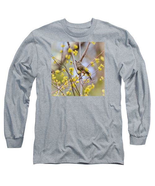 Ruby-crowned Kinglet Long Sleeve T-Shirt by Kerri Farley