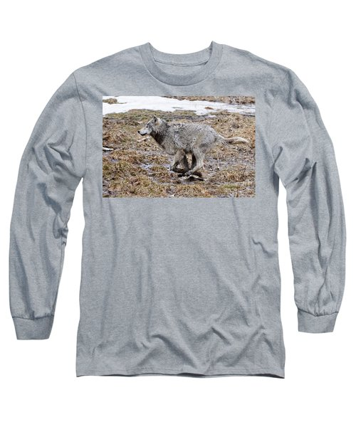 Long Sleeve T-Shirt featuring the photograph Running Timber Wolf by Wolves Only