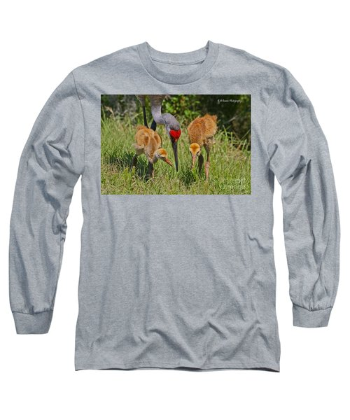 Sandhill Crane Family Feeding Long Sleeve T-Shirt