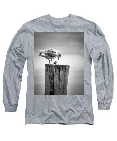 Seagull On Pier  Long Sleeve T-Shirt