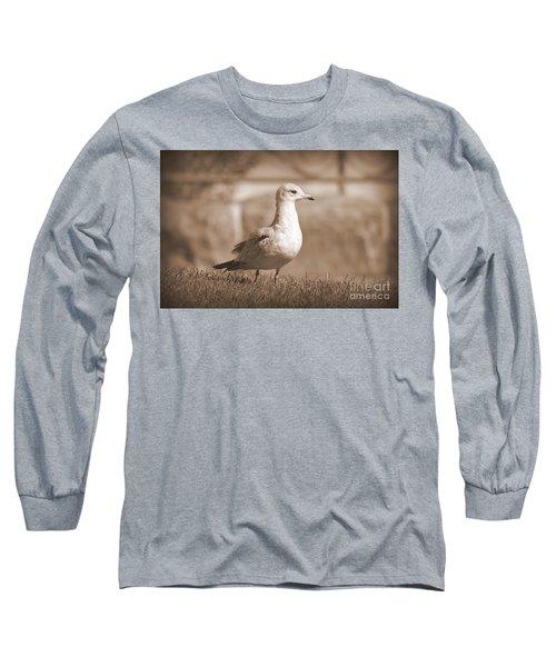 Seagulls 2 Long Sleeve T-Shirt