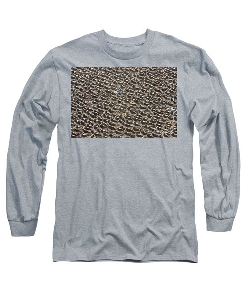 Semipalmated Sandpipers Sleeping Long Sleeve T-Shirt by Yva Momatiuk John Eastcott