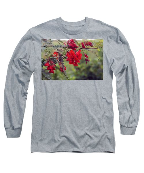 Sesbania Punicea Long Sleeve T-Shirt