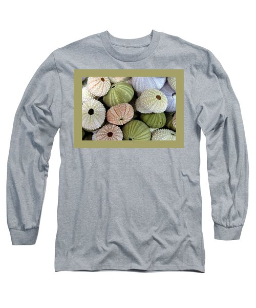 Shells 5 Long Sleeve T-Shirt by Carla Parris