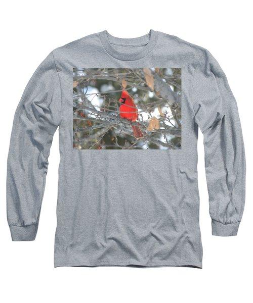 Shining Bright Red Long Sleeve T-Shirt