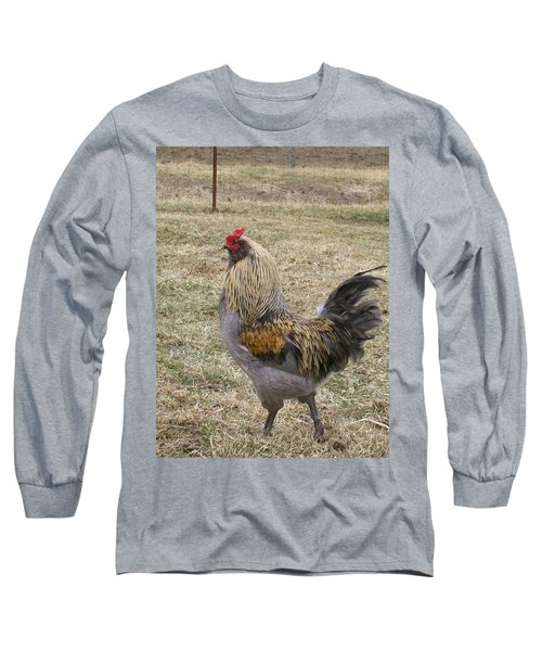 Long Sleeve T-Shirt featuring the photograph Showing Off  by Sara  Raber