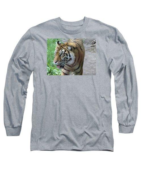 Long Sleeve T-Shirt featuring the photograph Siberian Tiger by Lingfai Leung