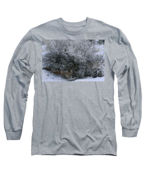 Silent Accord Long Sleeve T-Shirt by Ed Hall