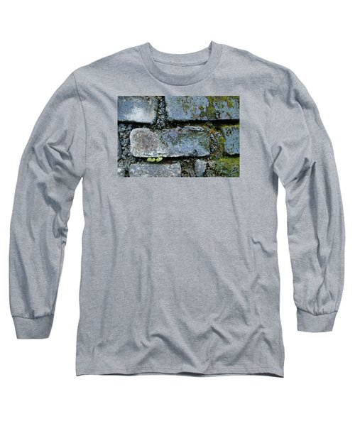 Long Sleeve T-Shirt featuring the photograph Skc 0301 Tiny Twin Leaves by Sunil Kapadia