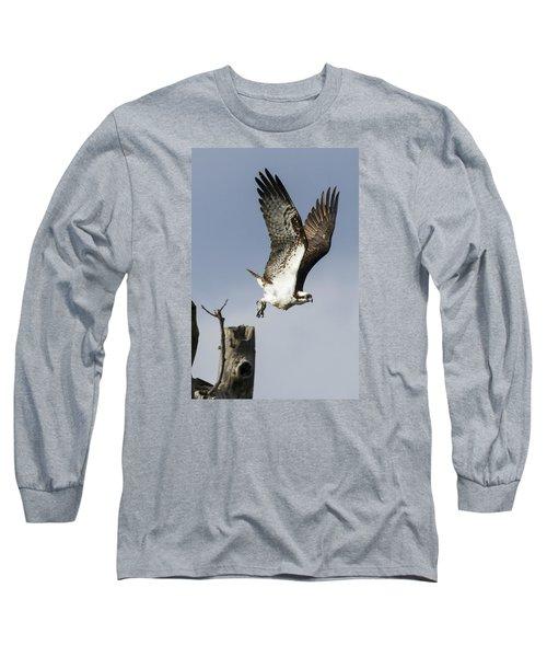 Sky Hunter Long Sleeve T-Shirt by David Lester