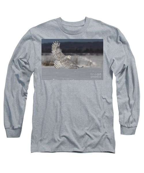 Snowy Owl In Flight Long Sleeve T-Shirt by Mircea Costina Photography