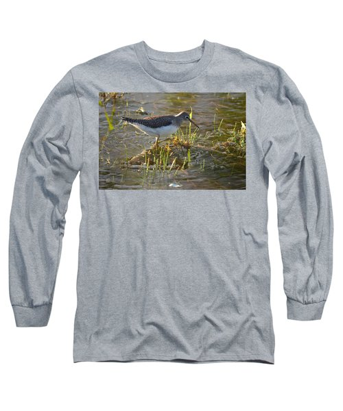 Solitary Sandpiper 2 Long Sleeve T-Shirt by James Petersen