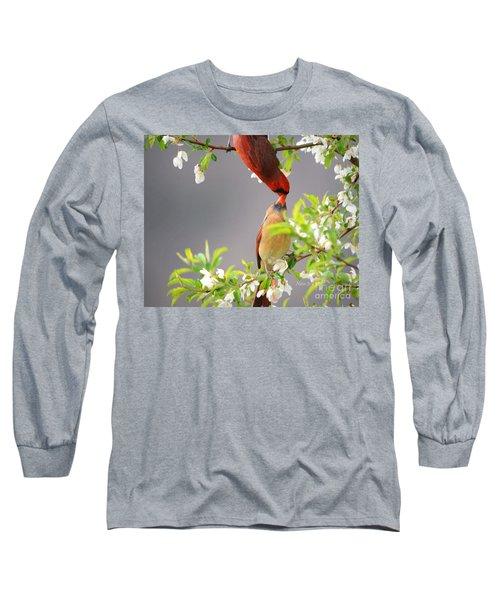 Cardinal Spring Love Long Sleeve T-Shirt