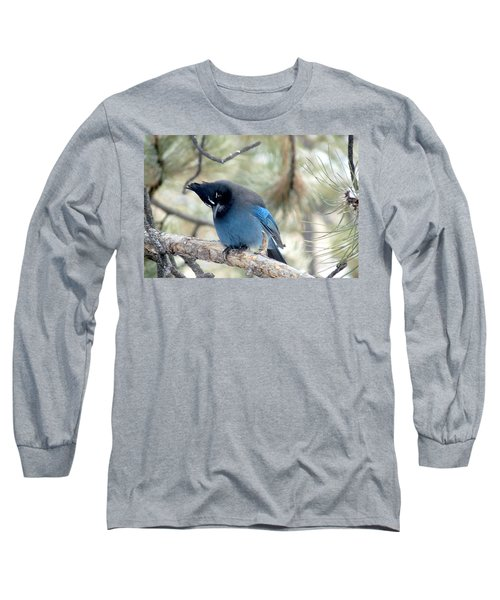 Steller's Jay Looking Down Long Sleeve T-Shirt