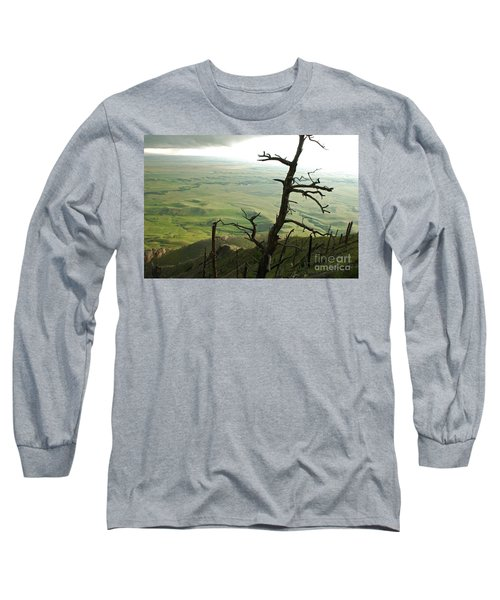Long Sleeve T-Shirt featuring the photograph Stormy Tree by Mary Carol Story