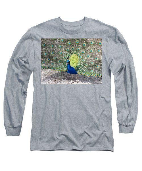 Long Sleeve T-Shirt featuring the photograph Sunny Peancock by Caryl J Bohn