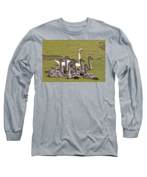 Swans Family Long Sleeve T-Shirt by Mike Santis