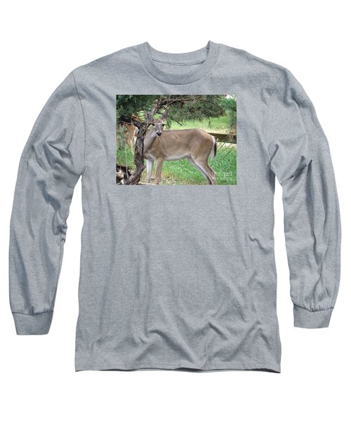 Long Sleeve T-Shirt featuring the photograph Texas Beauty - White Tail Doe by Ella Kaye Dickey