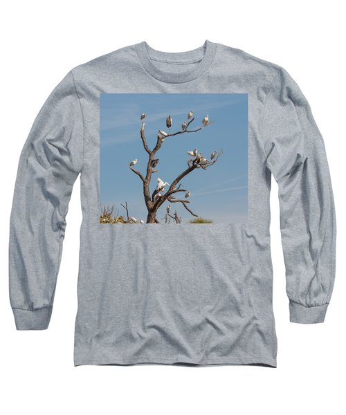 Long Sleeve T-Shirt featuring the photograph The Bird Tree by John M Bailey