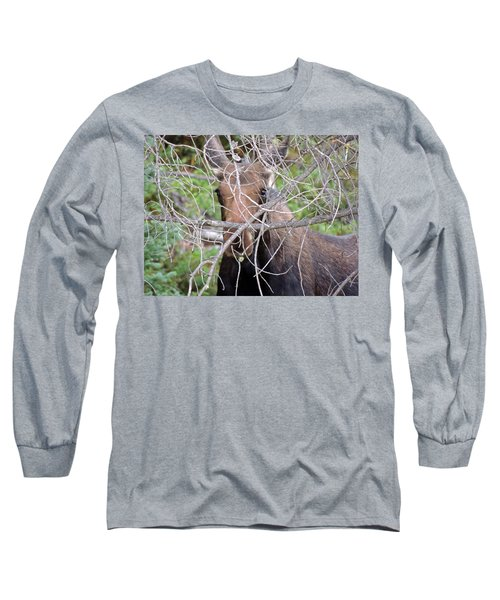 Long Sleeve T-Shirt featuring the photograph The Calf by Lynn Sprowl