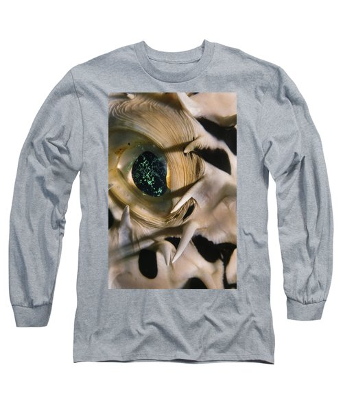 The Eye Of A Pufferfish Long Sleeve T-Shirt