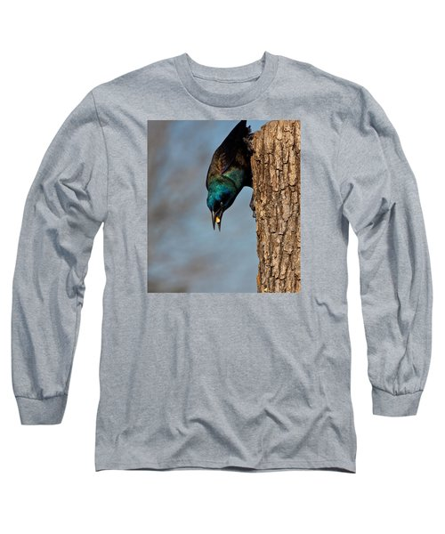 The Grackle Long Sleeve T-Shirt by Mark Alder