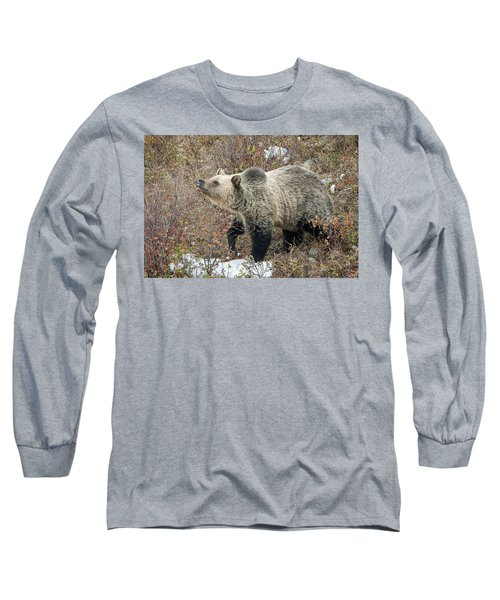 Long Sleeve T-Shirt featuring the photograph The Last Berry by Jack Bell