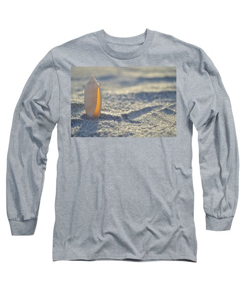 The Lettered Olive Long Sleeve T-Shirt