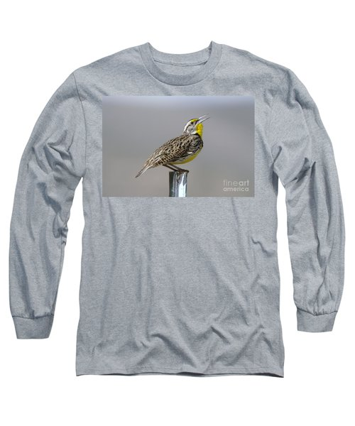 The Meadowlark Sings  Long Sleeve T-Shirt by Jeff Swan