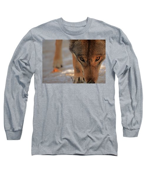 Those Eyes Long Sleeve T-Shirt by Karol Livote