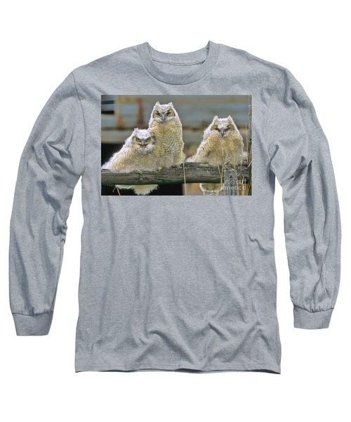 Three Great-horned Owl Chicks Long Sleeve T-Shirt