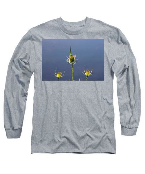 Trio Of Teasels Long Sleeve T-Shirt