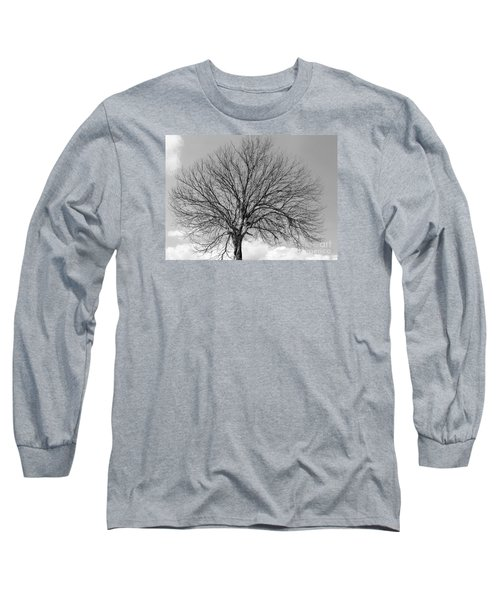Tropic Winter Long Sleeve T-Shirt by Amar Sheow