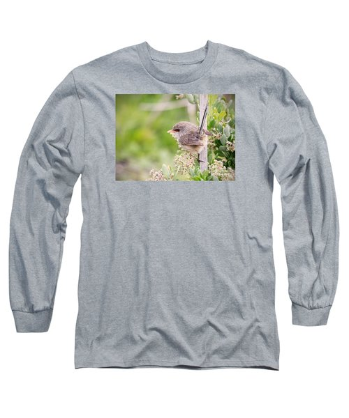Variegated Fairywren  Long Sleeve T-Shirt by Kym Clarke