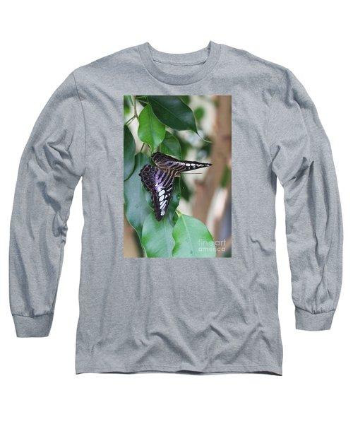 Violet Clipper Butterfly Long Sleeve T-Shirt